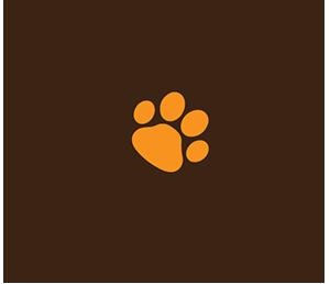Tandem - Education canine et conseil en comportement canin